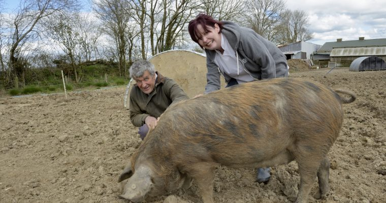 We're helping keep rare breeds alive