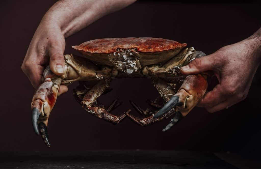 Crab Devon Seafood